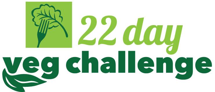 20151110-22daychallenge-logo