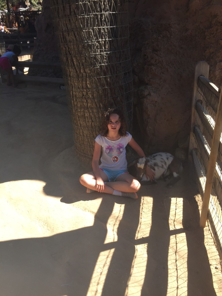 """Mom, can I just stay here in the shade and pet the animals?"""